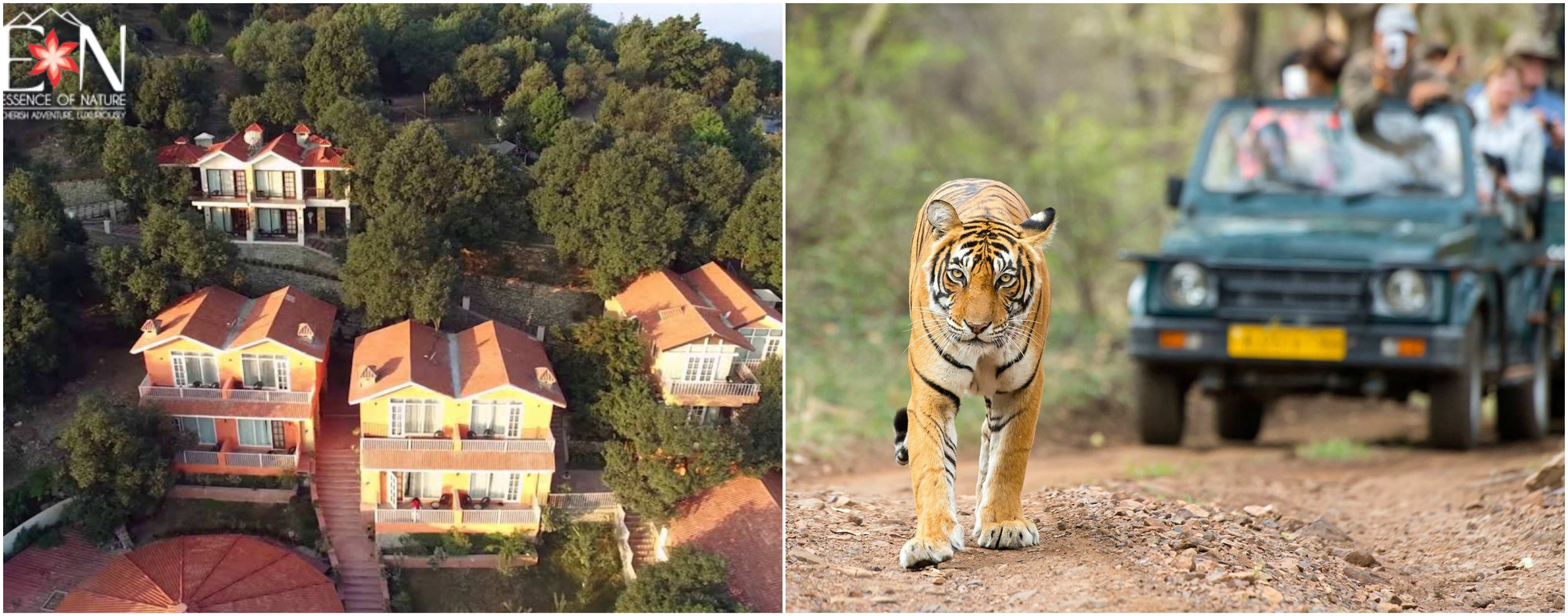 Explore Jim Corbett with EoN Club